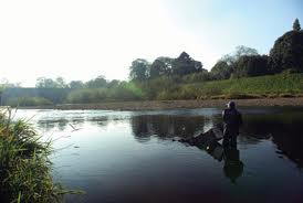 River Tees Fishing